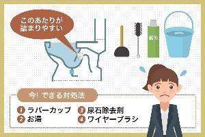 【これでダメなら業者呼べ】トイレつまりを簡単に直す6つの方法