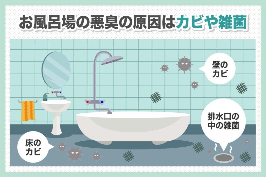 お風呂場の悪臭はカビや細菌が原因