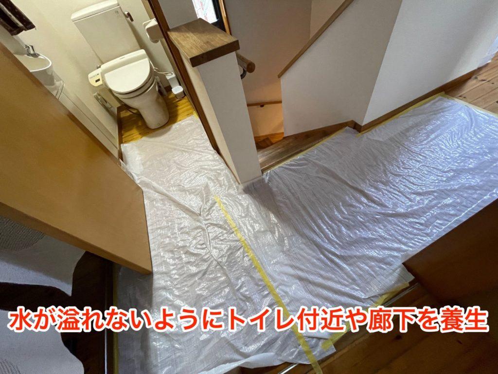 トイレの周辺を養生